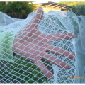 Bird Netting 5m Wide Heavy Duty - White