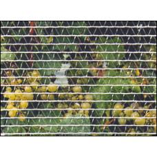 Bird Netting 1.2m width - Econo grade