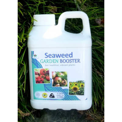 Liquid Seaweed Concentrate plant food- 1 Litre