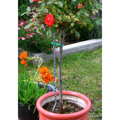 Twistake Small 760mm Height- Silver