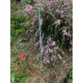 Twistake 900mm Height - silver